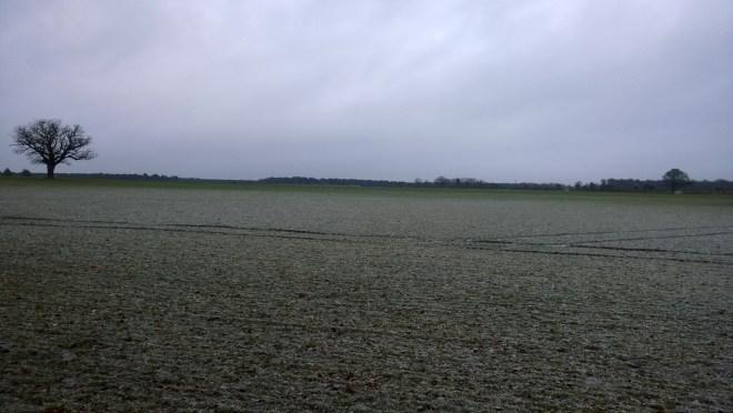 Beautiful but bleak landscape