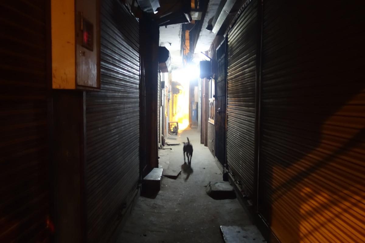 Alley in Majnu Ka Tila, Delhi