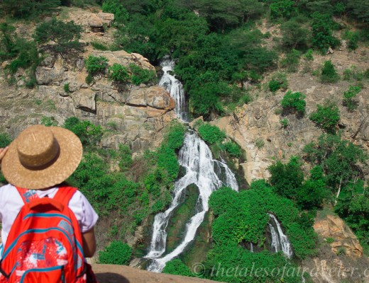 day-trip-bangalore-to-chunchi-waterfall-10-4