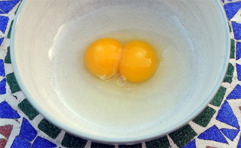 A double yolker!!