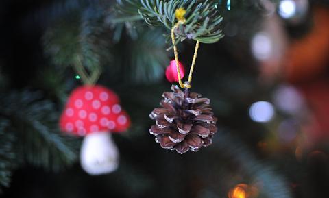 Ornament-6113