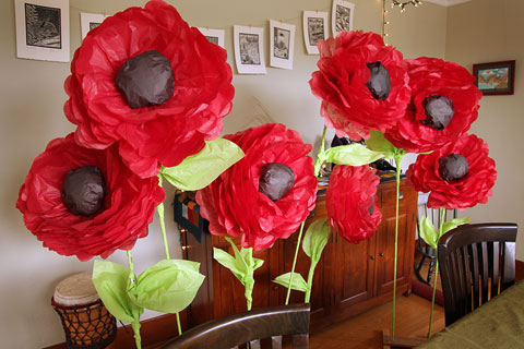 Post-production poppies brighten up the dining room.