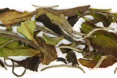 organic-bai-mu-dan-white-tea-wide