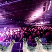 LONDON WAREHOUSE EVENTS NEW YEARS DAY PARTY | TOBACCO DOCK | REVIEW