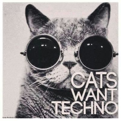 cats techno