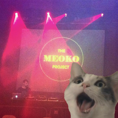 meoko project