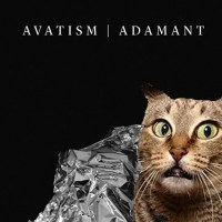 ALBUM REVIEW | AVATISM | ADAMANT