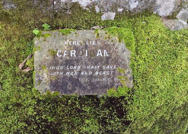 Horse's_grave,_detail_-_geograph.org.uk_-_845199