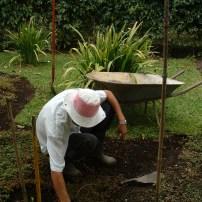 Weeding a Garden