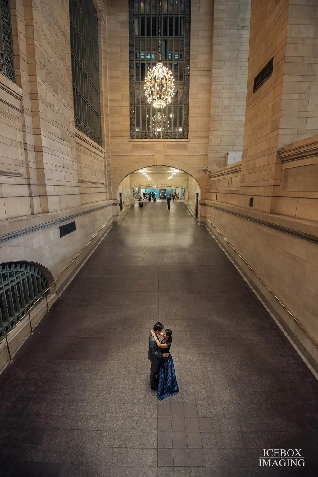 grand central station, icebox imaging