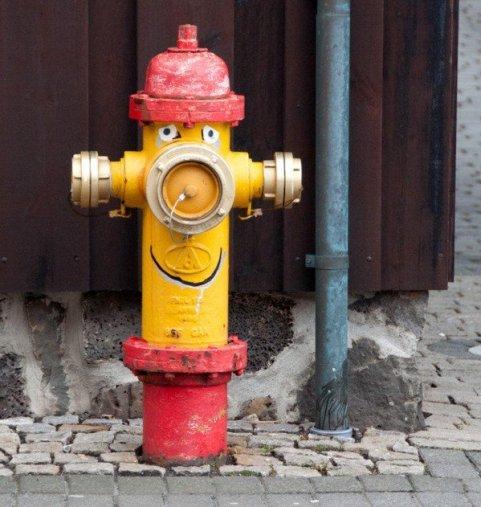 Reykjavik Water Hydrant