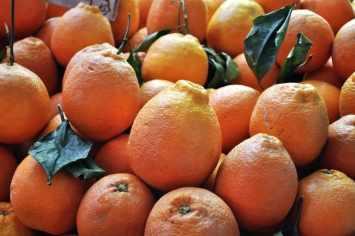 Catania Market - Sicilian Oranges
