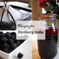 Recipe for Blackberry Vodka
