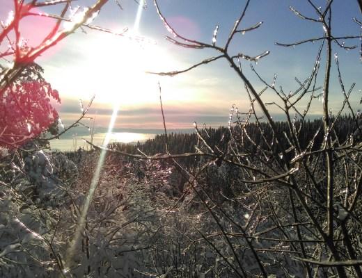 Oslo a winter wonderland - snow and ice