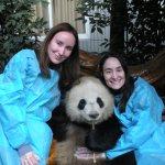 Hugging a Panda in Chengdu, China!