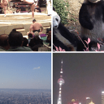 Tokyo, Chengdu, Taipei and Shanghai: Introduction