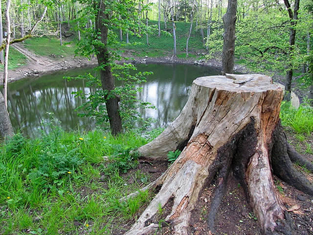 Kaali Field of Meteorite Craters is one of the top things to do in estonia for nature lovers