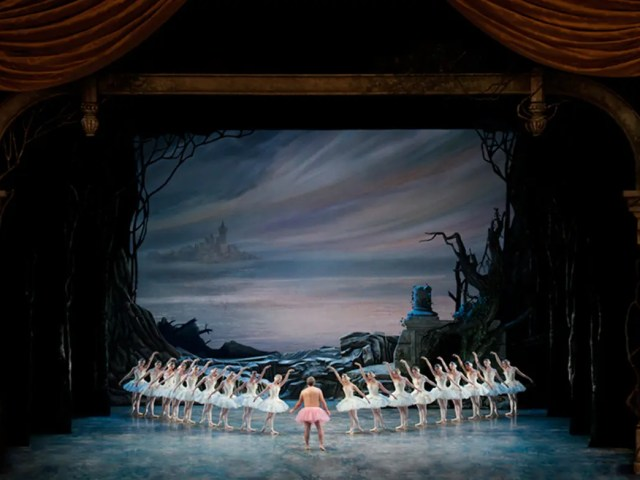 Swan Lake - The Tutu Project for Breast Cancer Awareness