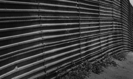 Dealing with the Causes: Mexico's Economic Policy and Migration