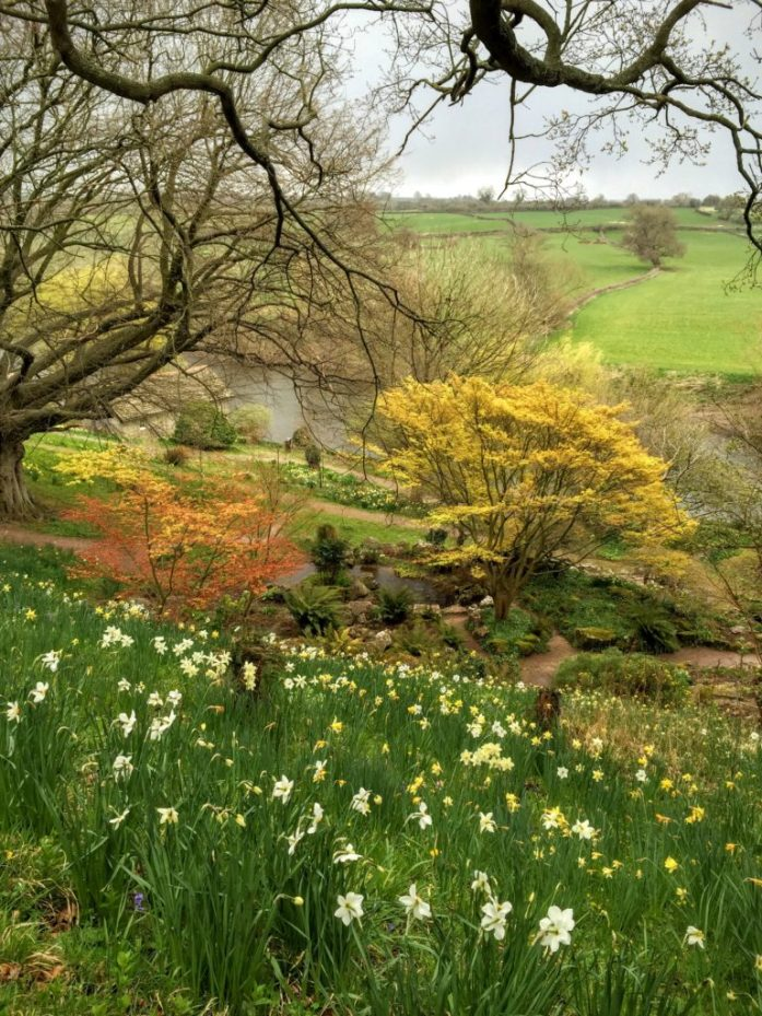 在赫里福德郡的堰花园,春天的颜色映衬在灰色的天空