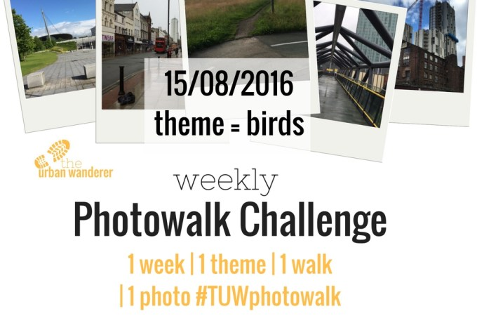15/08/2016 – Weekly Photowalk Challenge Topic: Birds