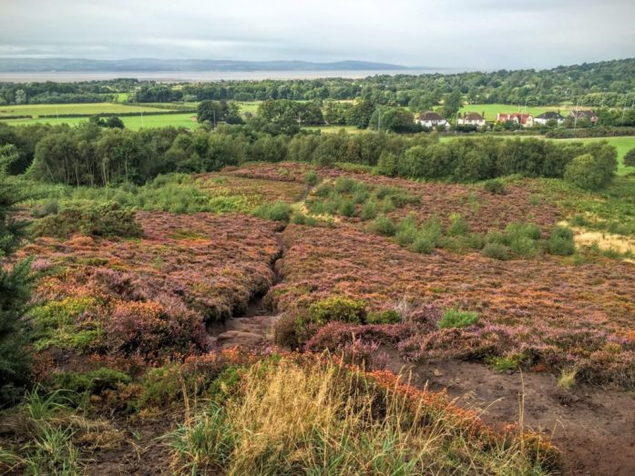 Thurstaston Common, Wirral | The Urban Wanderer | Sarah Irving | Under 1 hour from Manchester