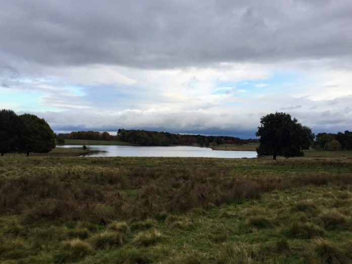Tatton park | Cheshire | Walking and Hiking | Under 1 hour from manchester | Get Outside Manchester | Sarah Irving | The Urban Wanderer