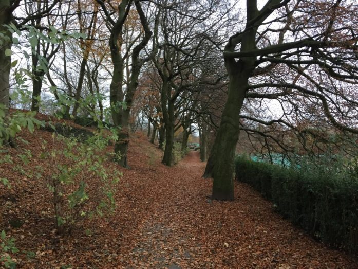 Foxdenton Hall Park | Chadderton | Oldham | Get Outside | Parks Near Manchester | Sarah Irving | The Urban Wanderer | Under 1 hour from Manchester