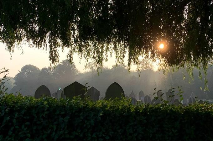 飞利浦公园公墓– an urban sanctuary