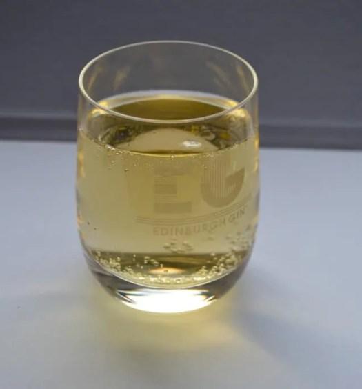 Elderflower gin and cava
