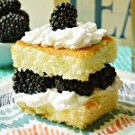 Top 10 Brilliant Blackberry Dessert Recipes