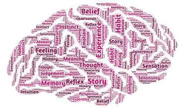 psychology-544405_1280--tojpeg_1431011651278_x2
