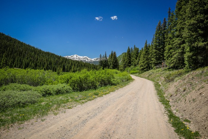 French Pass 46