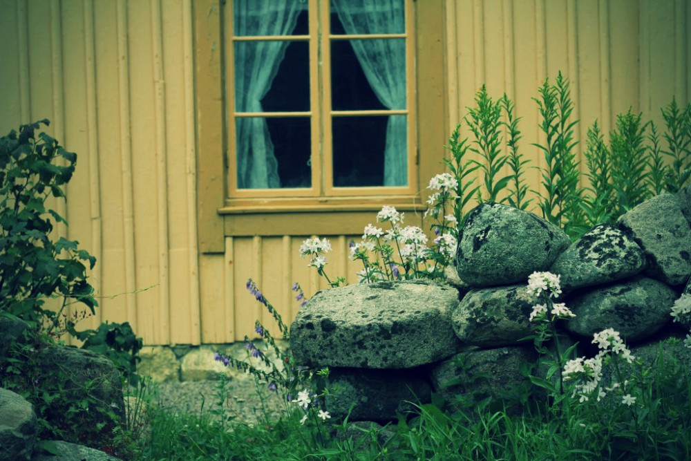 gerlesgarden blomma nb