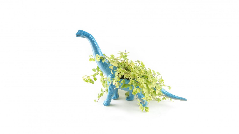 13-dino-planter