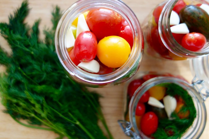 pickled-tomatoes