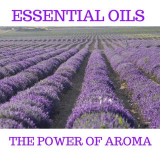 Essential Oils The Power Of Aroma