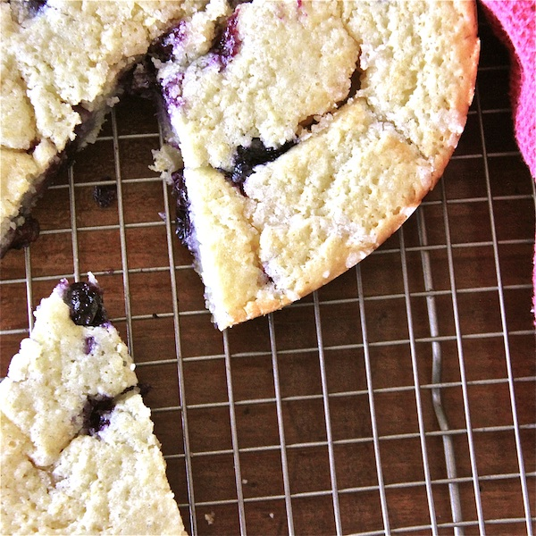 High Altitude Baking- Blueberry Buttermilk Corncake - The Wimpy Vegetarian