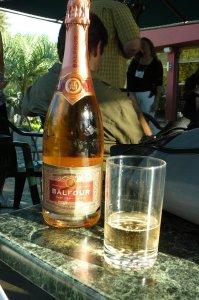 rodney-strong-vineyard-1311