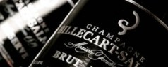 Billecart Salmon Brut Reserve for New Year's (or anytime, really)