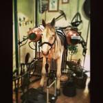 sulfur spraying horse