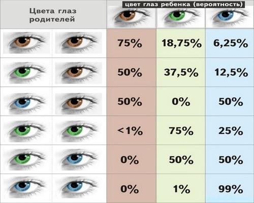 В каком возрасте цвет глаз меняется