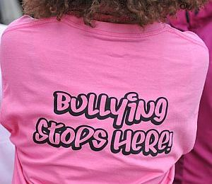 There are No Innocent Bystanders: Reflections on the ERASEBullying Summit