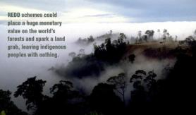 Amazon+REDD WWF Mines The Green Gold Rush To The Amazon: Making  $60 billion From Fear