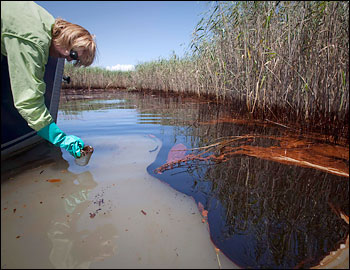 Nature Conservancy Oil Drilling