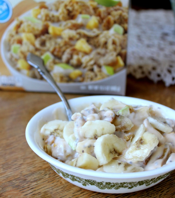 yogurt chia banana granola