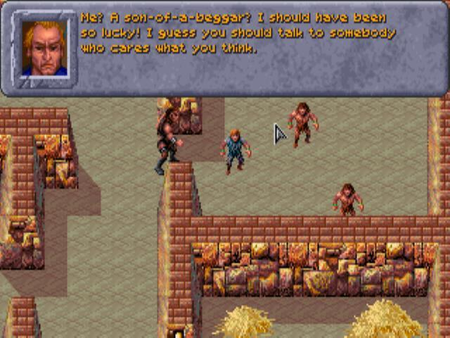 Dark Sun: Shattered Lands, 1993 (MS-DOS).
