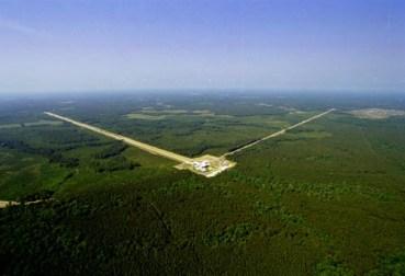 LIGO trees