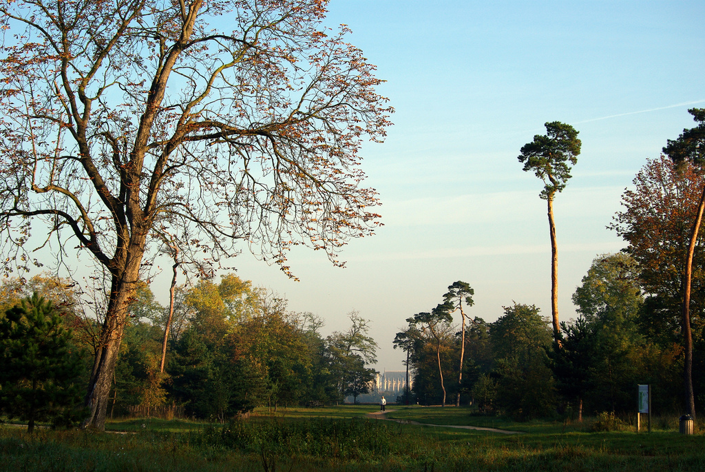 Discover the Natural Side of Paris in Bois de Vincennes