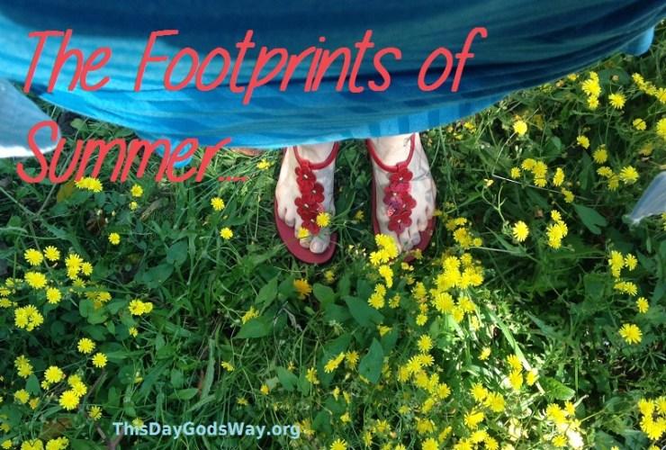 Footprints of Summer